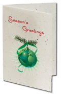 Personalized Seeded Paper Christmas Cards